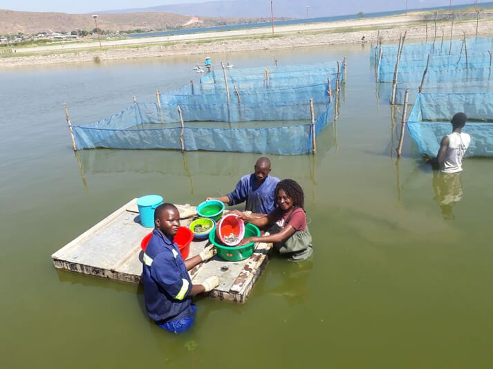 Aquaculture in Africa is expected to grow by 48 percent by 2030