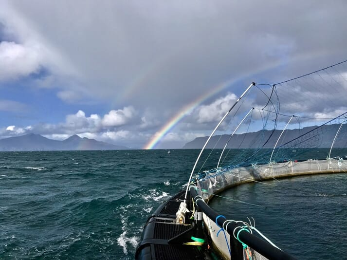 Looking towards the islands of Rum (left) and Eigg from the fish farm on Muck