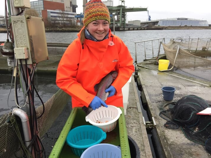 Dr Yvonne Roessner, stripping trout roe at Germany's only saltwater finfish farm