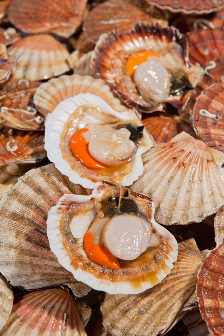 Shetland scallops have been MSC certified since 2012 and are currently bidding for re-certification