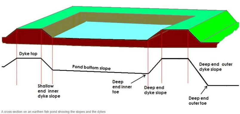 Semi Intensive Pond For Aquaculture, Farm Pond Design Pictures