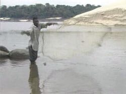 A farmer fishing for African Catfish Fingerlings in the Shallow parts of a River.