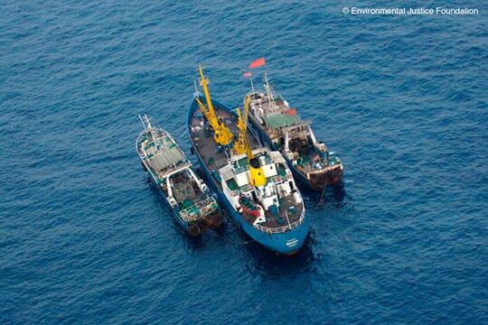 Transhipping at Sea SOURCE: Environmental Justice Foundation