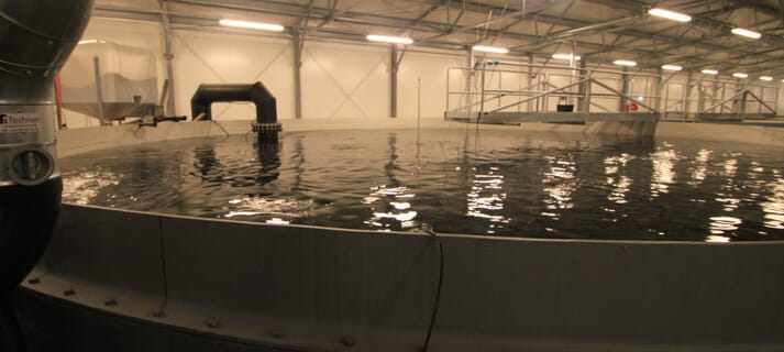 RAStech is one of the largest events focusing on recirculating aquaculture systems in the world