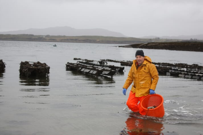 The funding should help a variety of farmers including John Hamilton of Lochnell Native Oysters